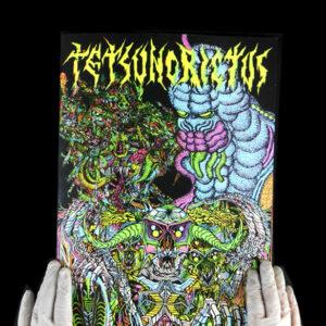 tetsunorictus
